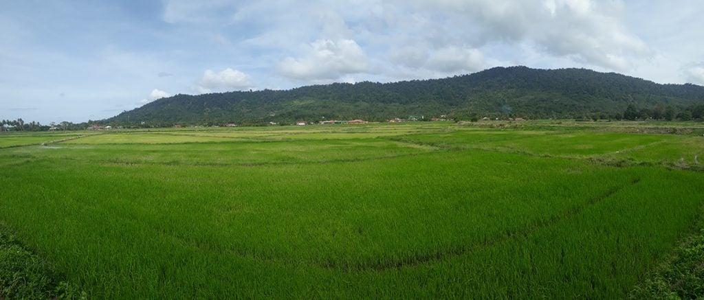 Landscape in Langkawi