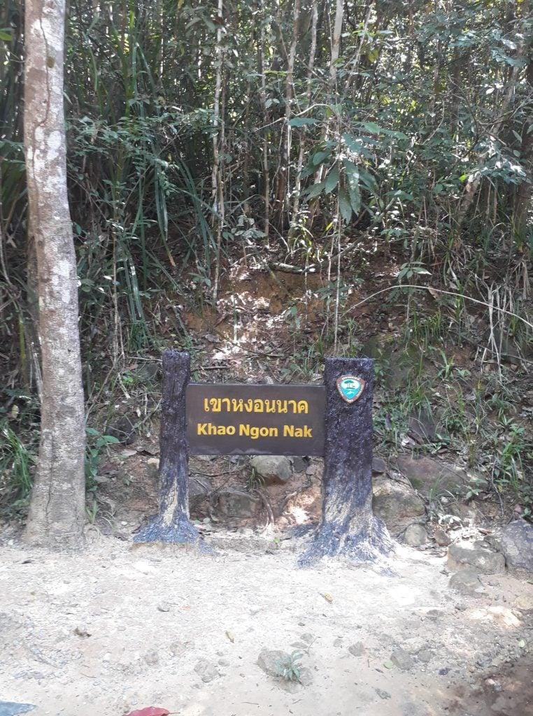 Hiking in Krabi Thailand
