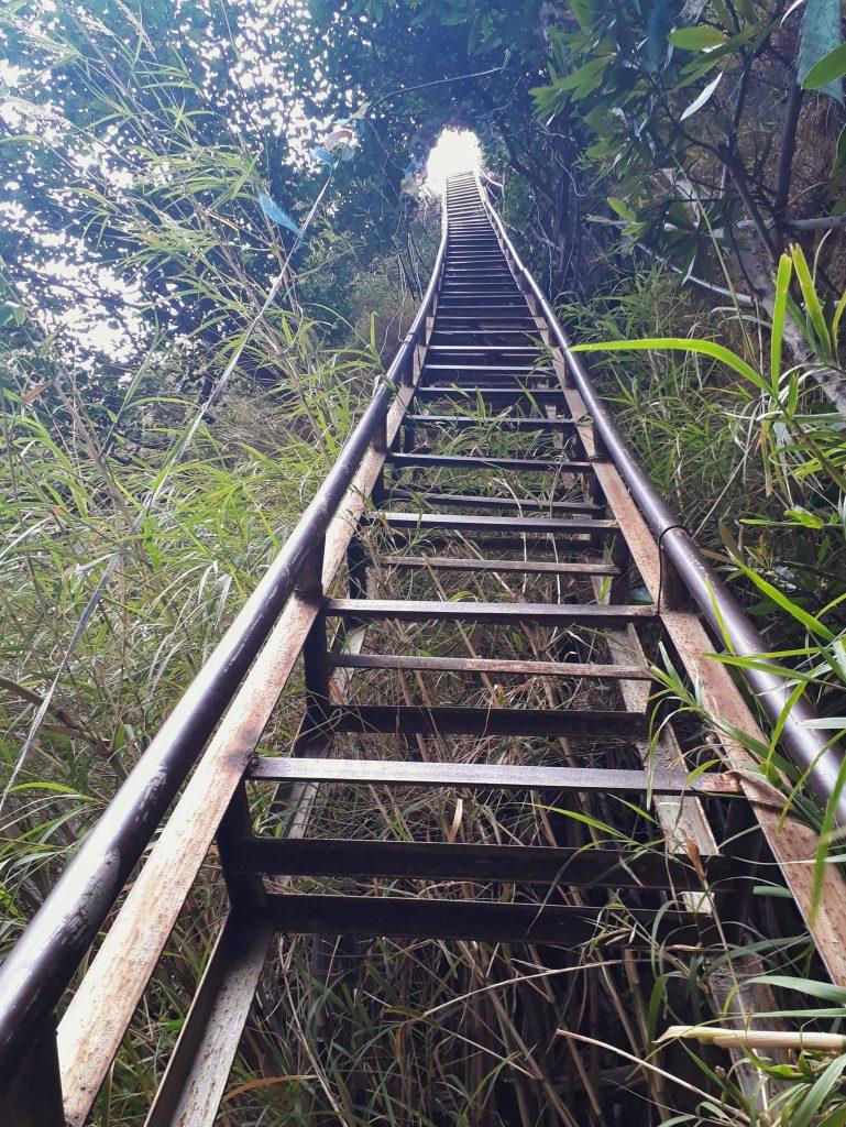 Sky ladder
