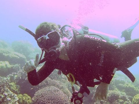 Scuba diving in Apo Island