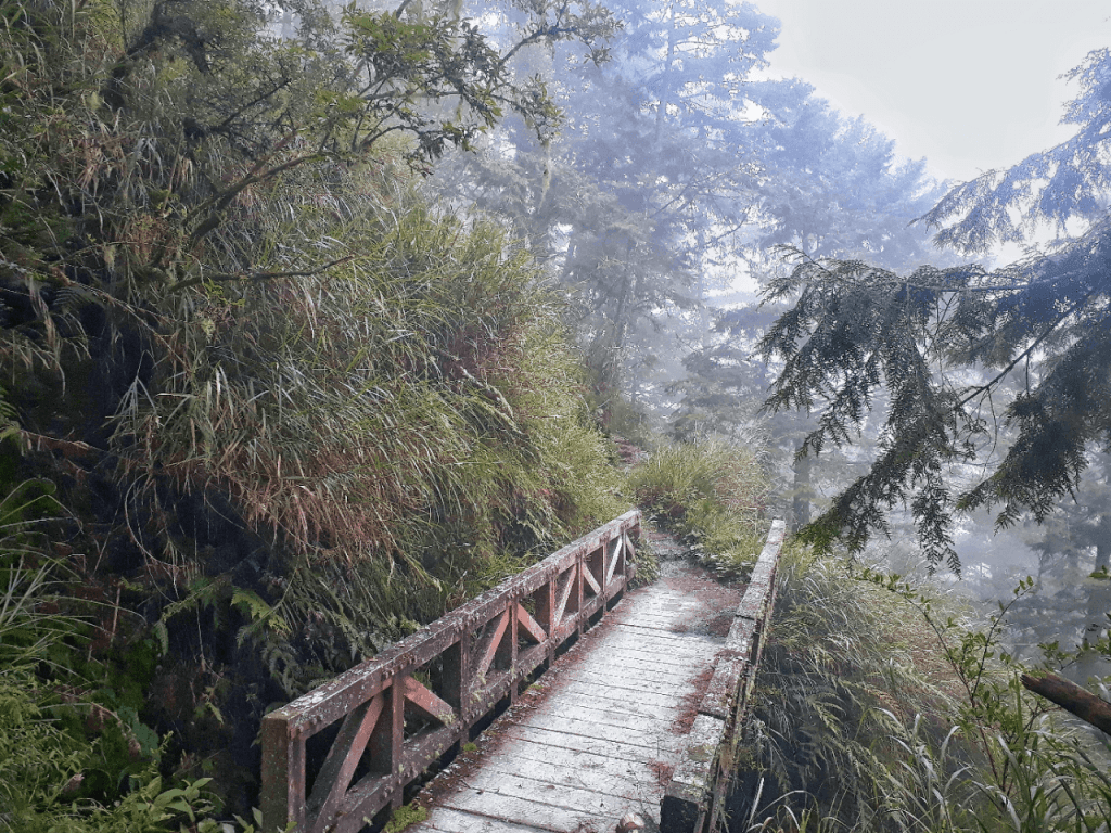 trail to jiaming lake