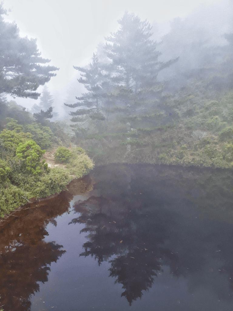 blackwater pond near sianyang lodge