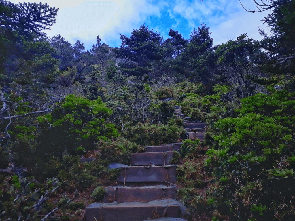 steps after sianyang cabin