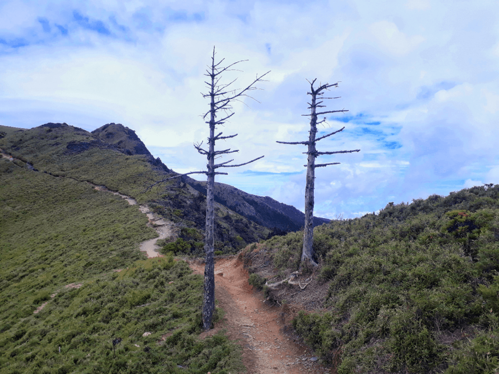 trail to jiaming cabin