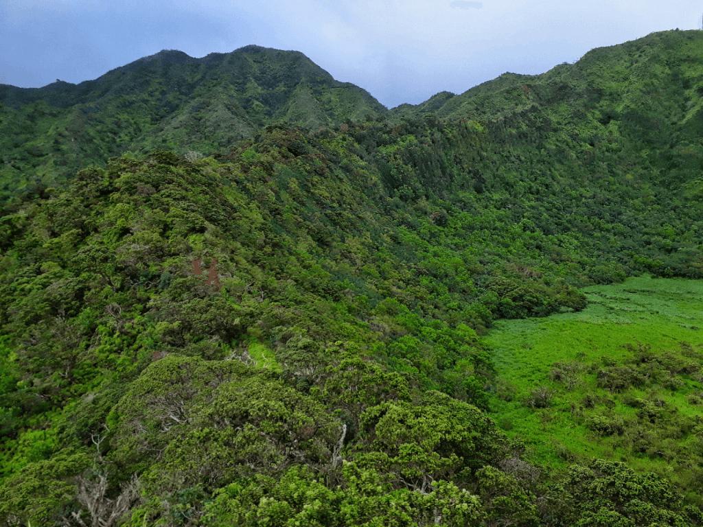 Kaau Crater Rim