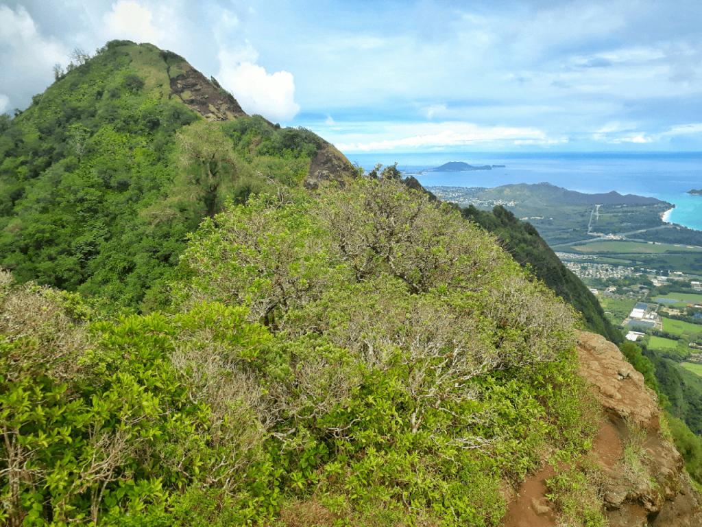 kuliouou ridge trail views