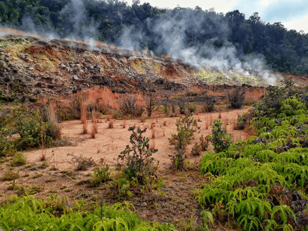 sulphur banks volcano park
