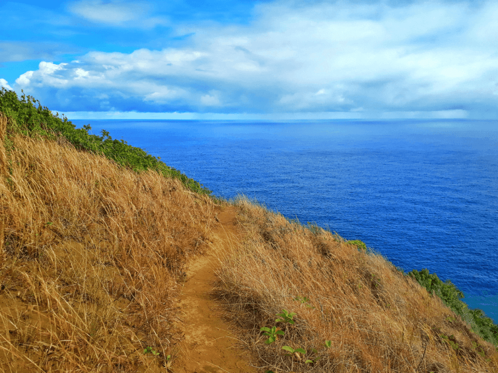 Hiking the pololu valley