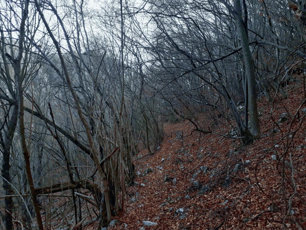 cheile turzii trail